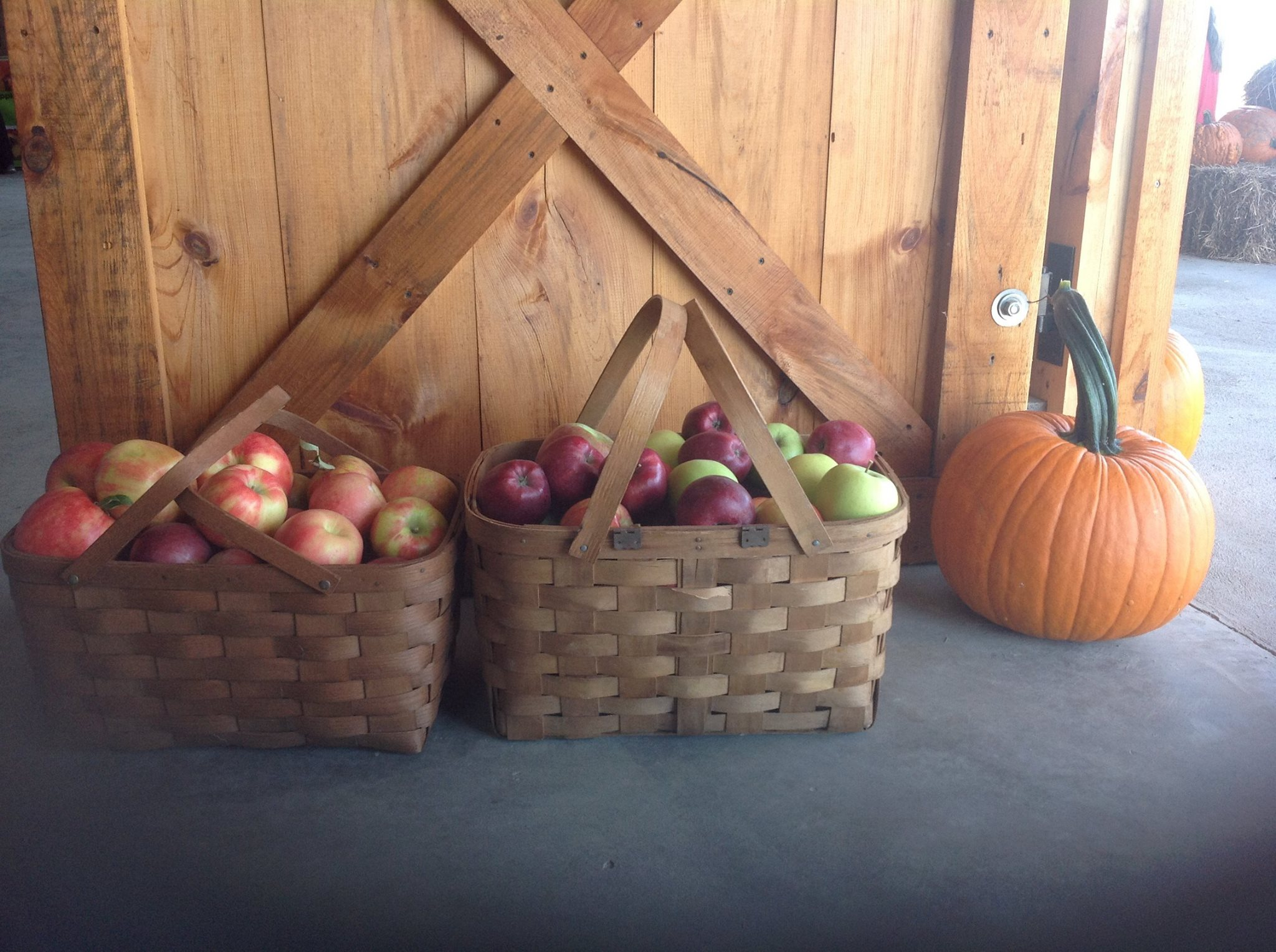 Baskets of Red Delicious, Golden Delicious, Honey Crisp, Macoun, McIntosh Apples and a big pumpkin at Fix Bros. Fruit Farm, Hudson, New York
