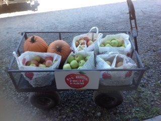 Apples and Pumpkins from Fix Bros Fruit Farm, Hudson, New York