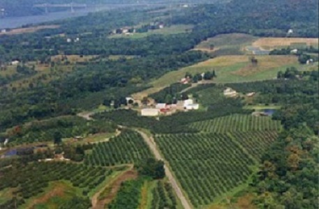 Aerial view of Fix Bros Fruit Farm showing land and buildings.
