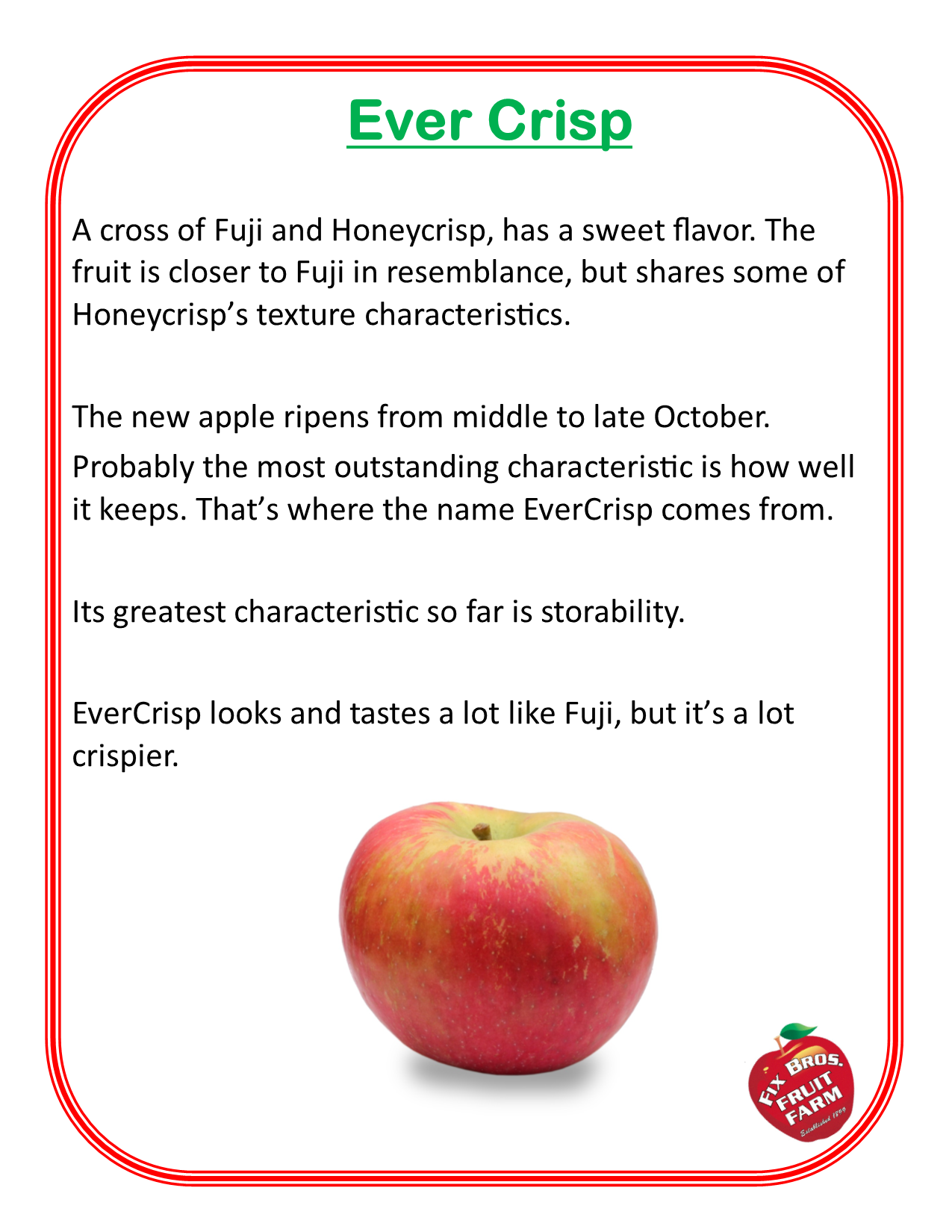 Ever Crisp apple grown at Fix Bros Fruit Farm, Hudson, New York