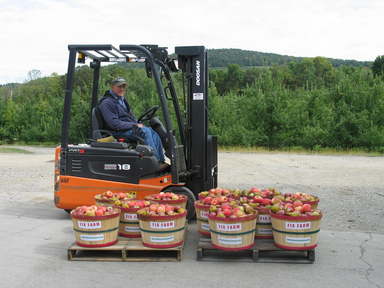 Bob Fix Sr on the Fork List and baskets of apples at Fix Bros. Fruit Farm, Hudson, New York